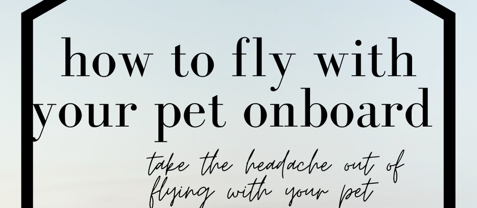 How to fly with your pet onboard