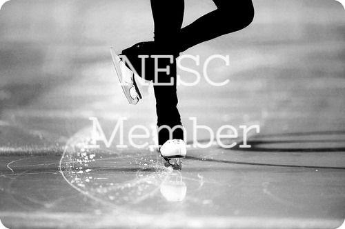 50 Min Freestyle - NESC Member