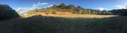 Panorama Nov.