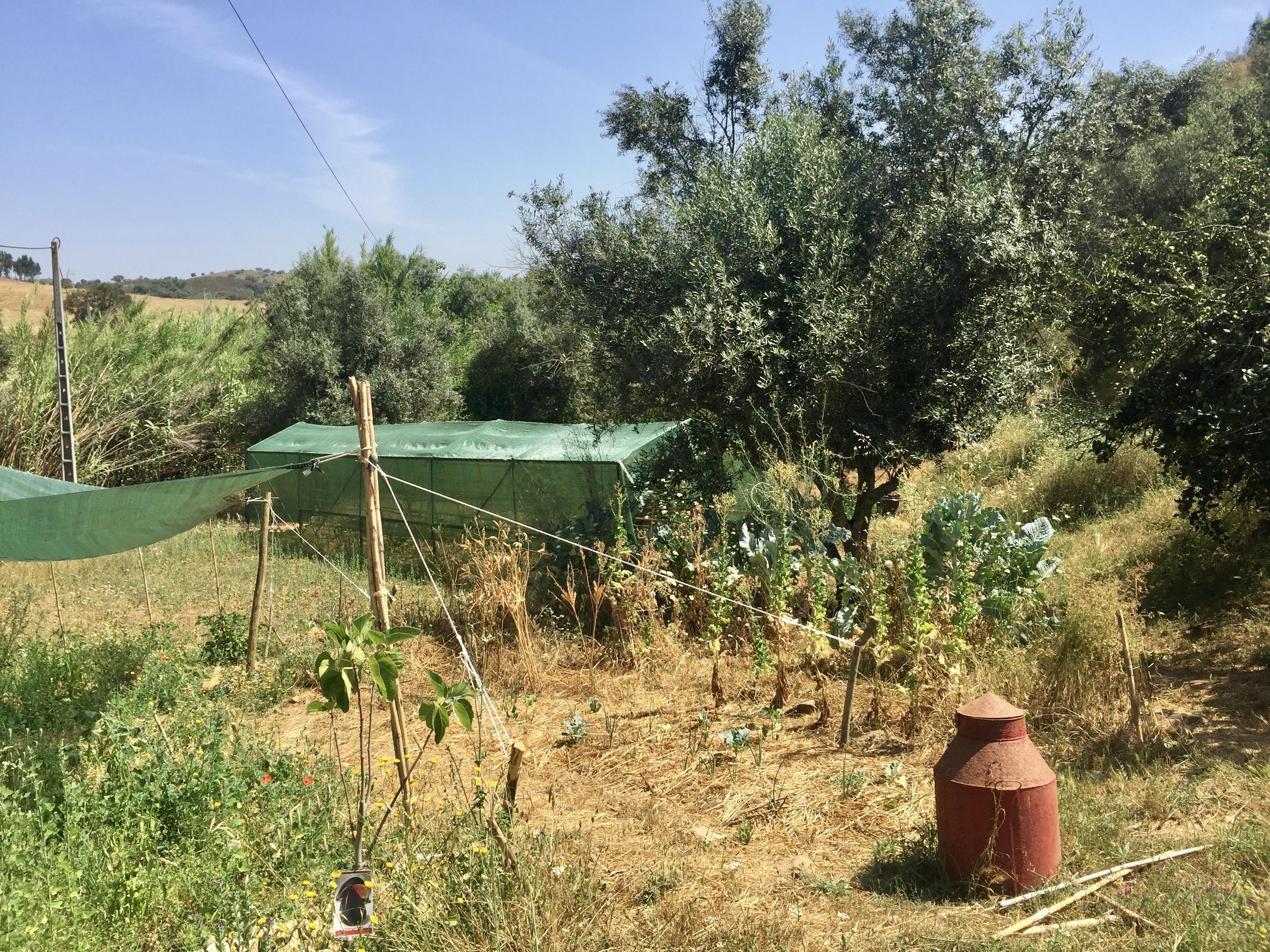 Permakultur Garten Estrafego