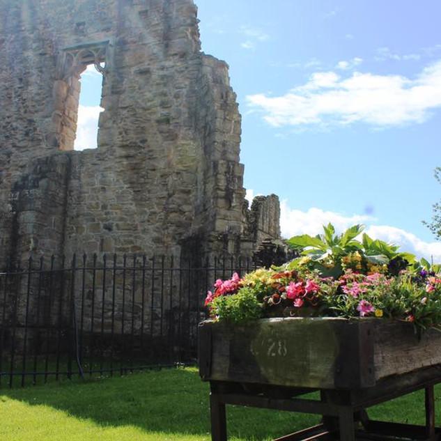 Finchale Abbey, flowers in the sun