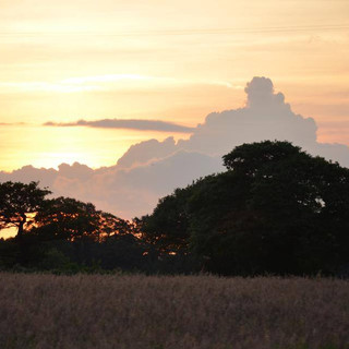 Sunset over the fields at Finchale