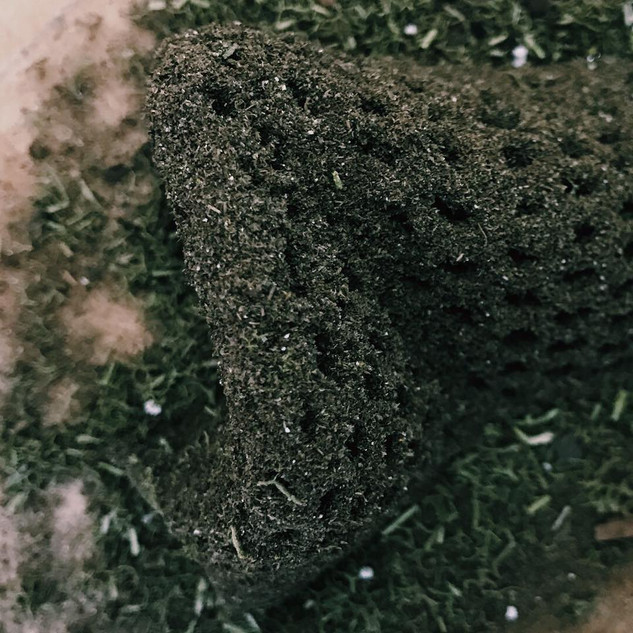 Earth (soil and moss)