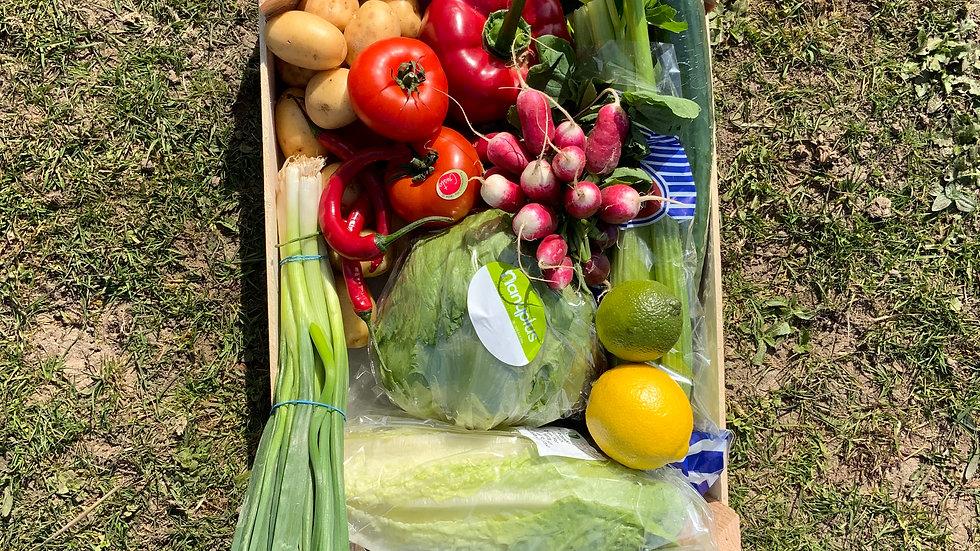 Basic salad box