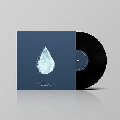 Vinyl-Record-Mockup-min.jpg