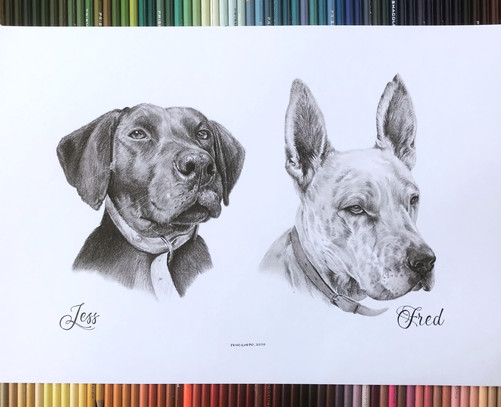 Graphite%20-%202%20dogs%20together%201B_