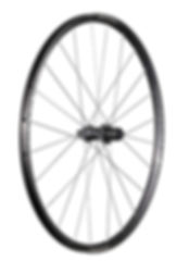 Wheel_ParadigmComp_R.jpg