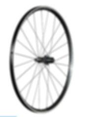 Wheel_ParadigmElite_R.jpg
