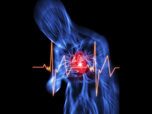 Luxury Online Rotes Kreuz CPR Zertifizierung Illustration - Online ...