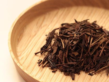 Enjoy Roasted Green Tea's Warm Flavors