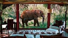 sanctuary-makanyane-safari-lodge-north-w