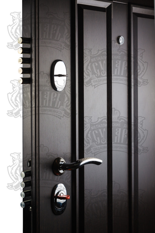 дверь Сударь 2