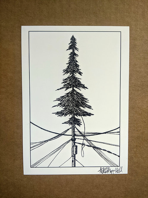 {Guest Artist} Electrical Pine by Adam Hall