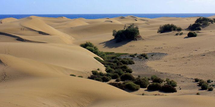 Sand dunes at Maspalomas Gran Canaria