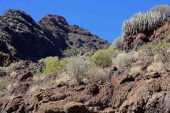 Gran Canaria hill