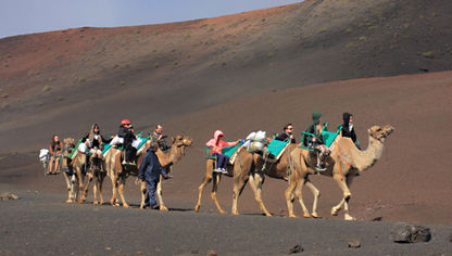 Camel trekking near Timanfaya Lanzarote in the Canary Islands