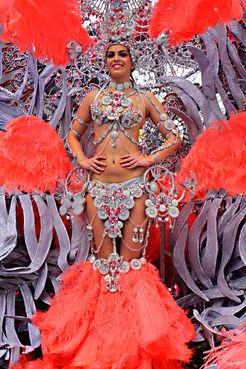Spanish carnival costume