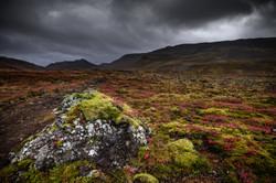 Automne Islandais
