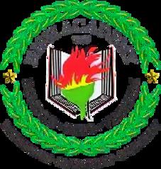 School Logo For International Academy In Lapu-lapu City Cebu Philippines