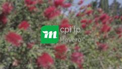 Spot CPIFP Movera