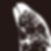 chihiroDesign_logomark.png