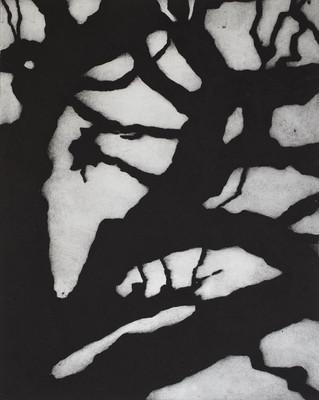 edith-baudrand-carborundum-la-foret-bran