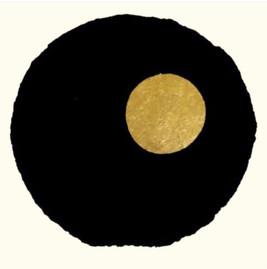 Petit aubier Or et Noir #1