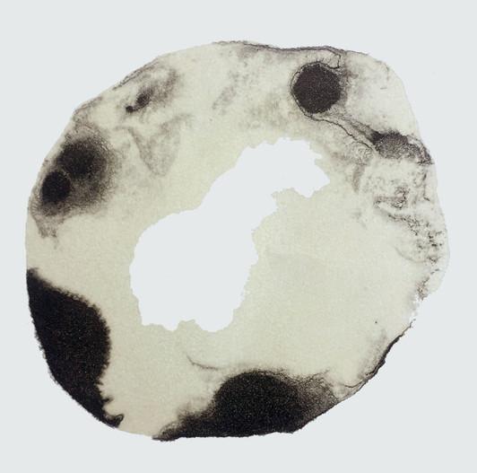 edith-baudrand-lithographie-cortex-20X20