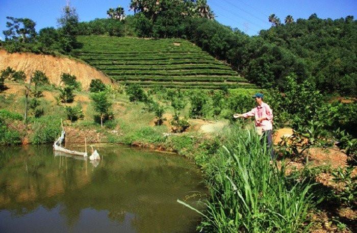 VAC farm