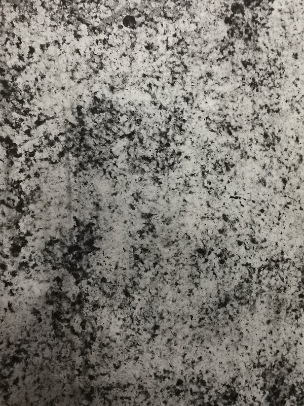 M1011.jpg