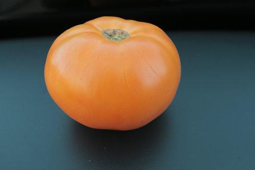 Amana Orange (Seeds)