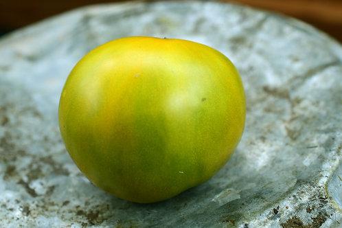 Cherokee Green (Seeds)