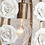 Thumbnail: Round Rose Chandelier (PO386)