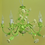 Thumbnail: Girly child Chandelier (PO66)