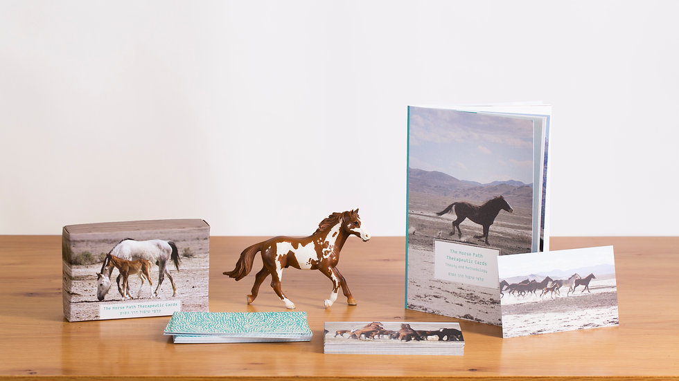 The horsepath therapeutic cards + Booklet