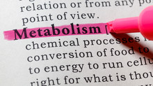 What Metabolism Means (And How to Fix Yours)