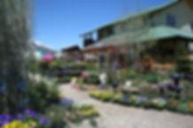 Garden Center Spring.JPG