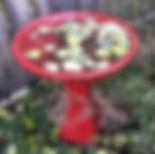 birdbath_edited.jpg