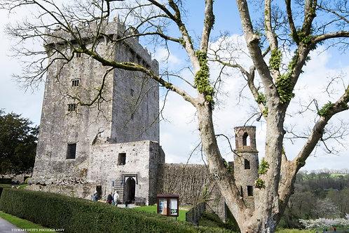 Blarney Castle - Cork