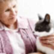 Senior og kat