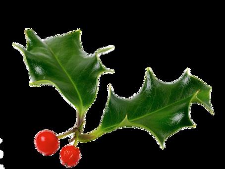 Juleferielukket indtil 4. januar