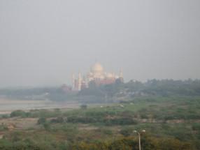 インドから帰って来ました。