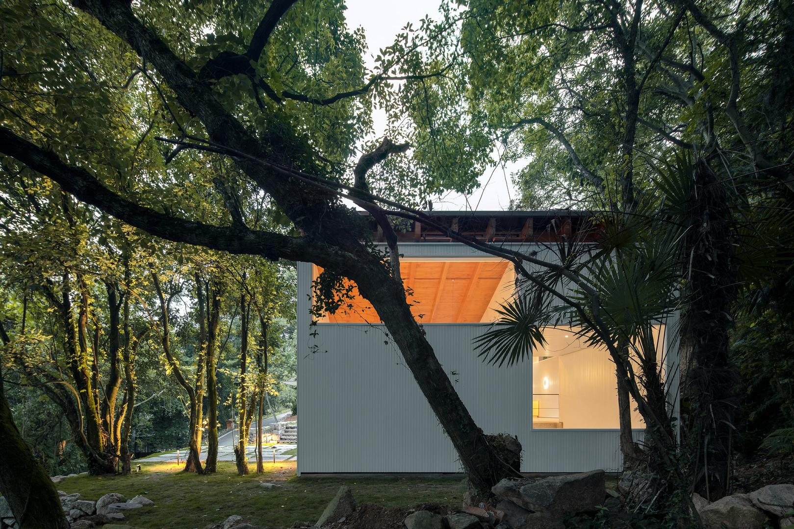 定海台房 Terraced House-8.JPG