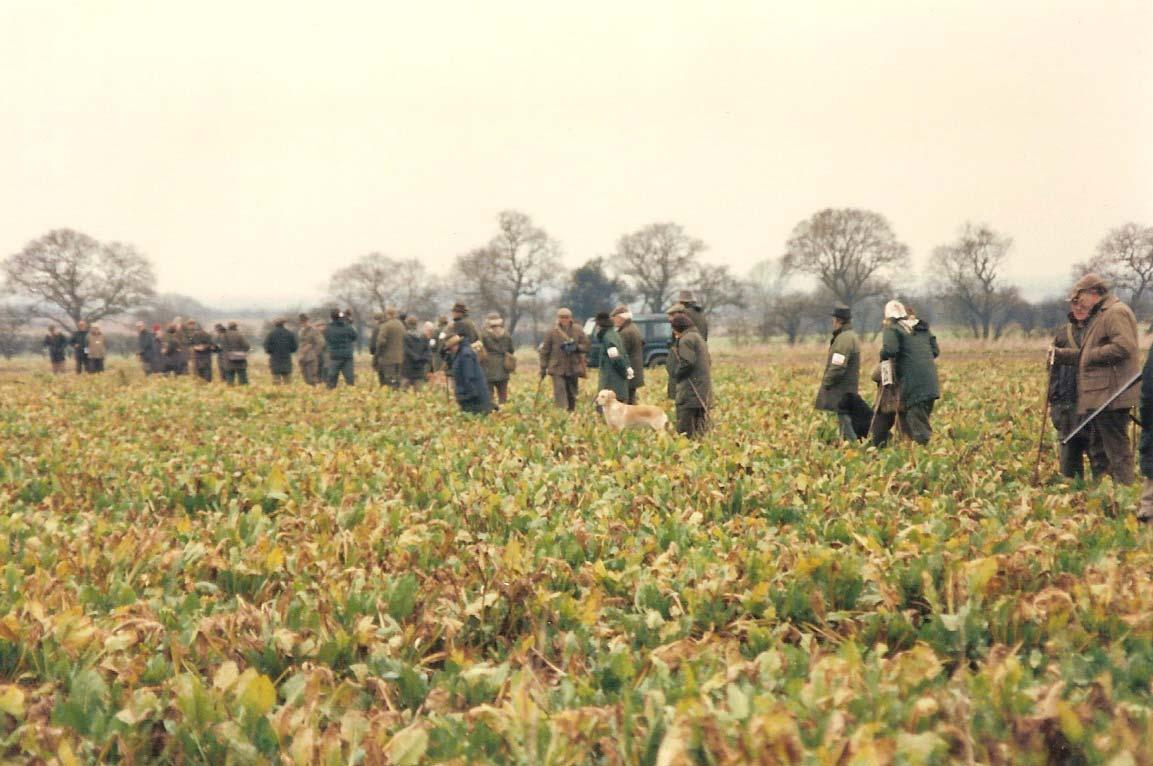 brit fld trl line in beet fld