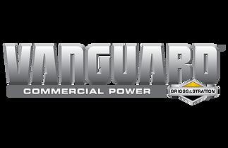 vanguard_logo_manualsearch.png