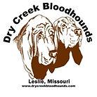 DryCreekBloodhoundsL Small.JPG