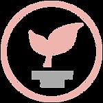 Roseskin-icon_paraben-free02.png