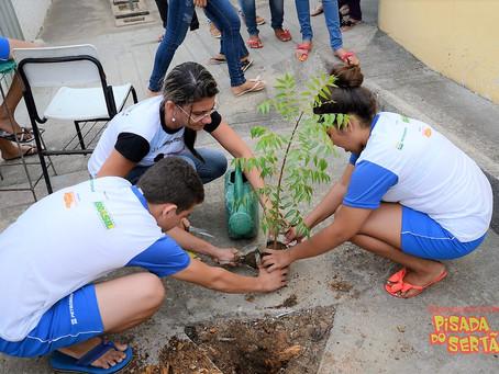 Pisada do Sertão realiza campanha de Arborização Urbana