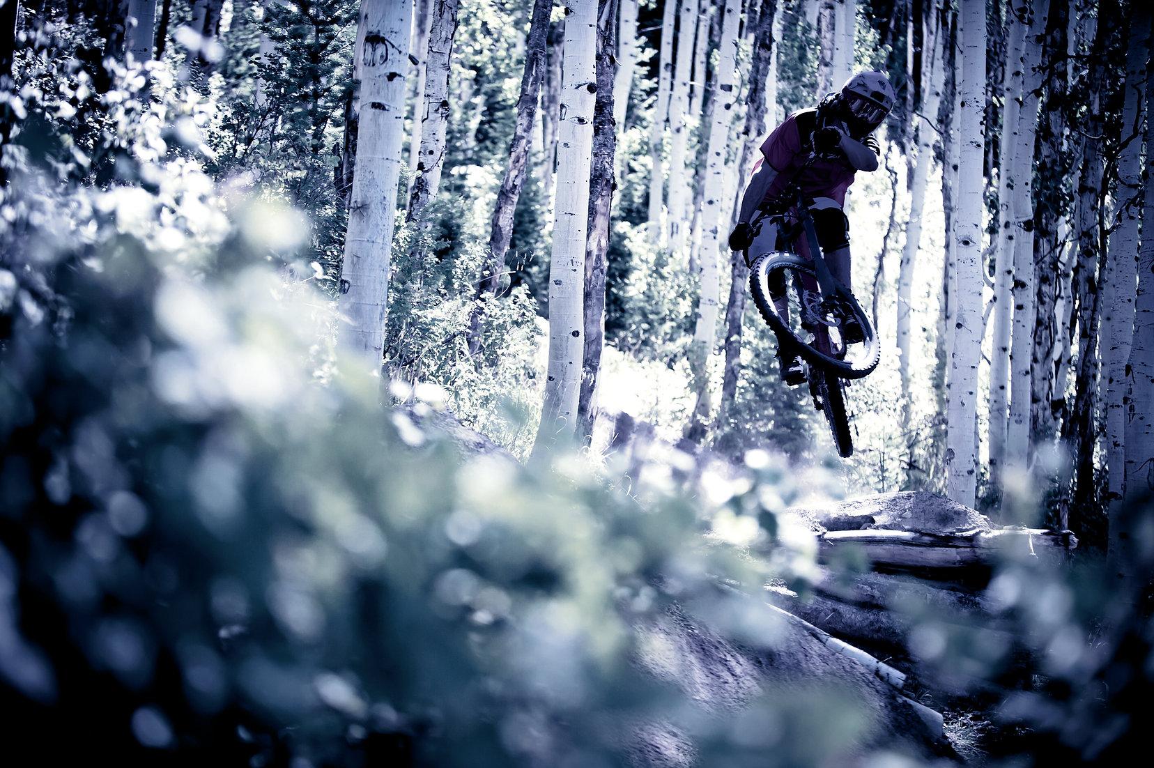 Mountain Biker i skogen