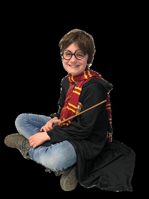 Harry Potterkist